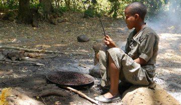 Etiopija-mati vseh kav